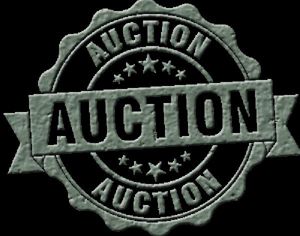 auctionlogo