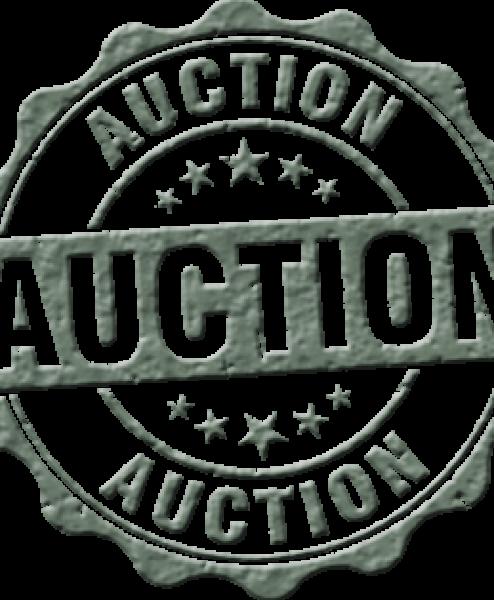 Auction Payments